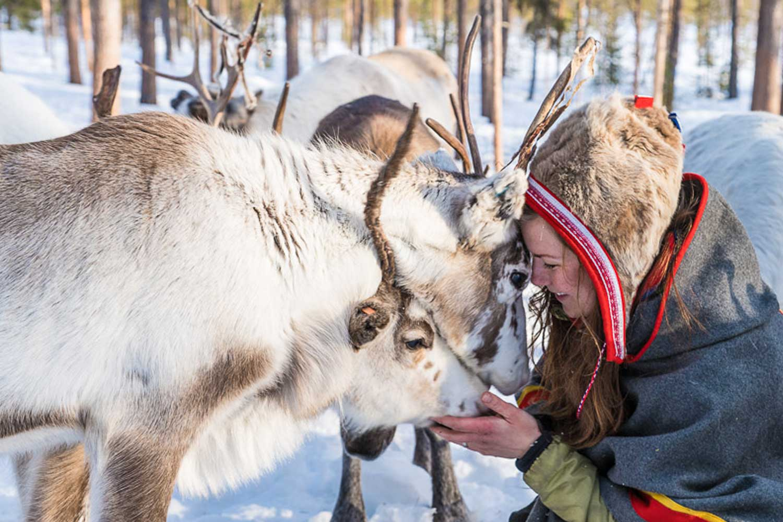 Sami culture swedish lapland