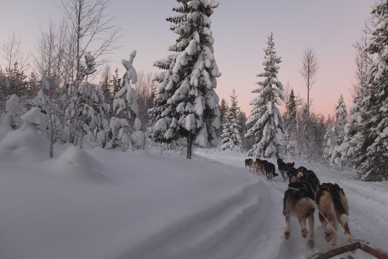 Swedish Lapland Holidays