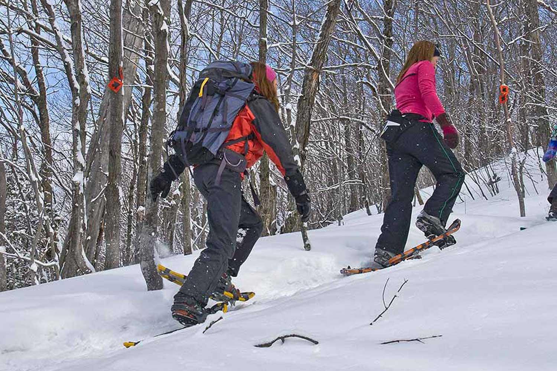 snowshoe walking tours luleå