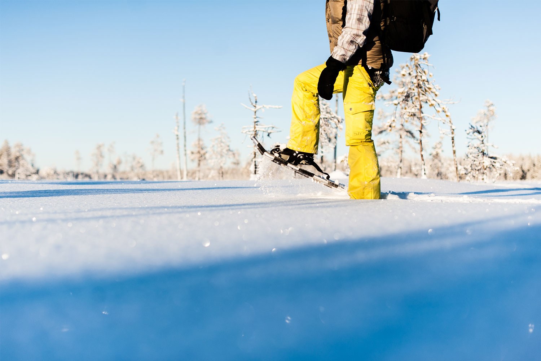 Snowshoe Tours Luleå