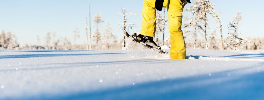 Zweeds Lapland sneeuwschoen