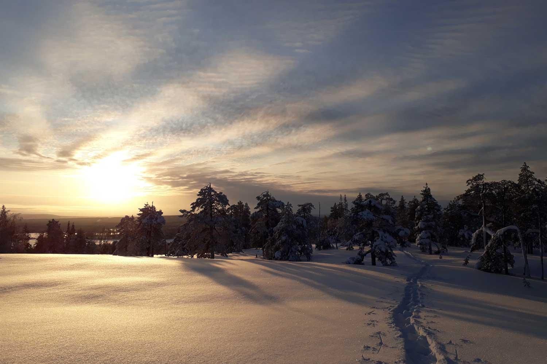Snowshoe walking Luleå