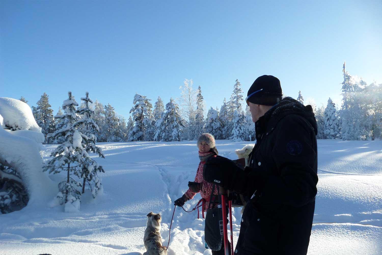 snowshoe-tours-Luleå
