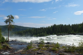 Storforsen national park