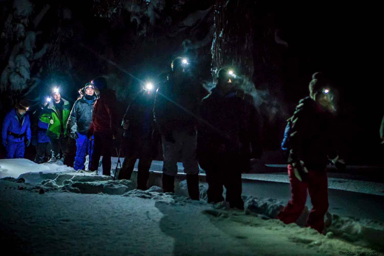 Northern-lights-snowshoe-lu