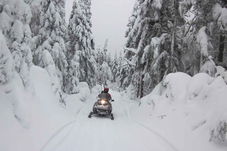 lulea-snowmobile-tours