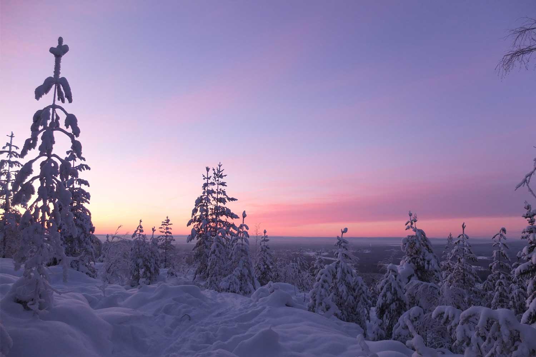 Lulea-snowshoe tours