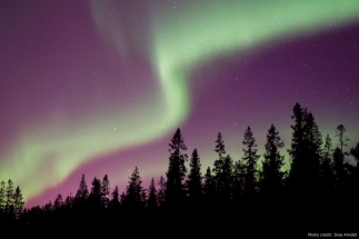 Northern lights lulea sweden