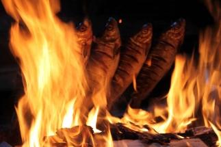White fish grilling Kukkaloforsen