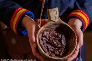 sami-culture-group-tours