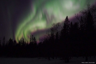 Northern-lights-tours-lulea