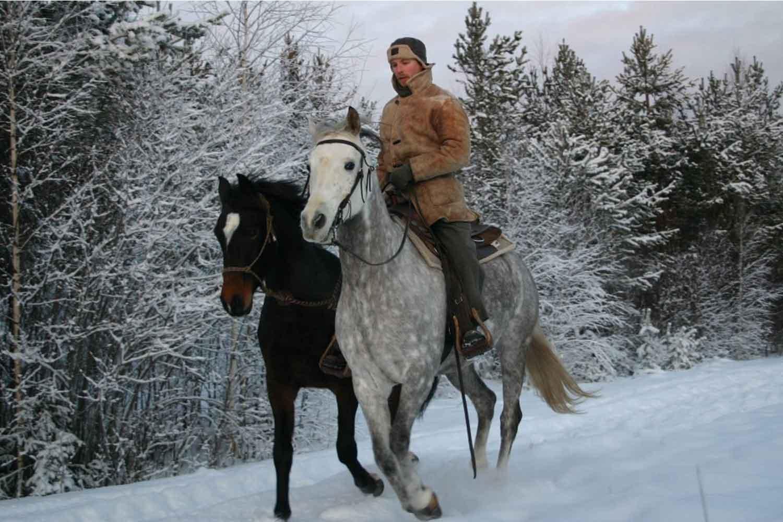 horse riding lulea