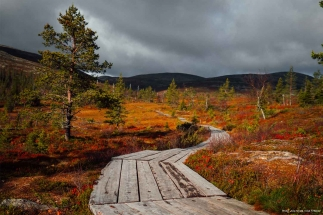 Finland nature walks
