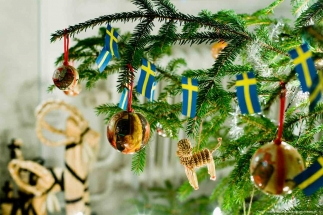 arctic-sweden-christmas-hol