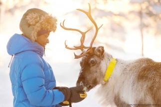 swedish-winter-holiday