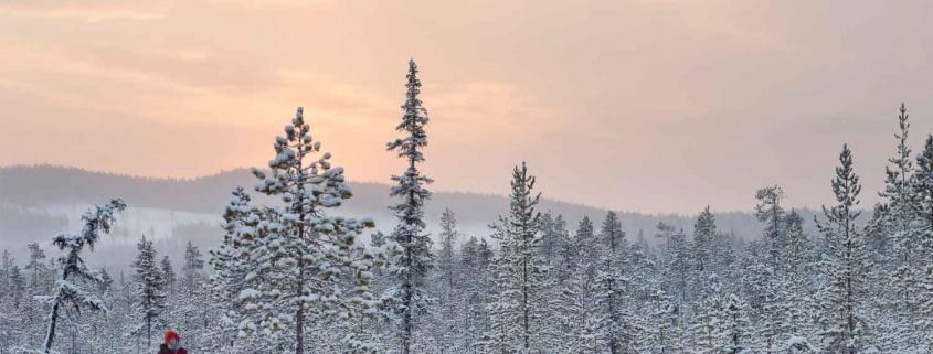 lulea-winter-break