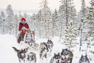 Dogsledding-adventure-Jokkm