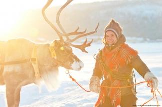 sami-culture-reindeer-winte