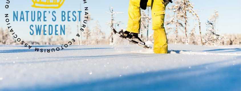 winter activities in Luleå