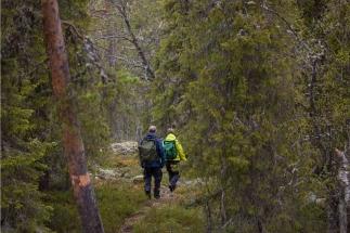 nature-guiding-autumn-holid