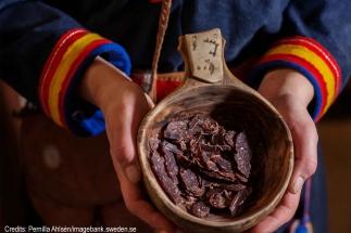 sami-culture-group-tours
