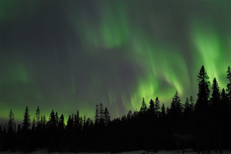 snowmobile Northern Lights