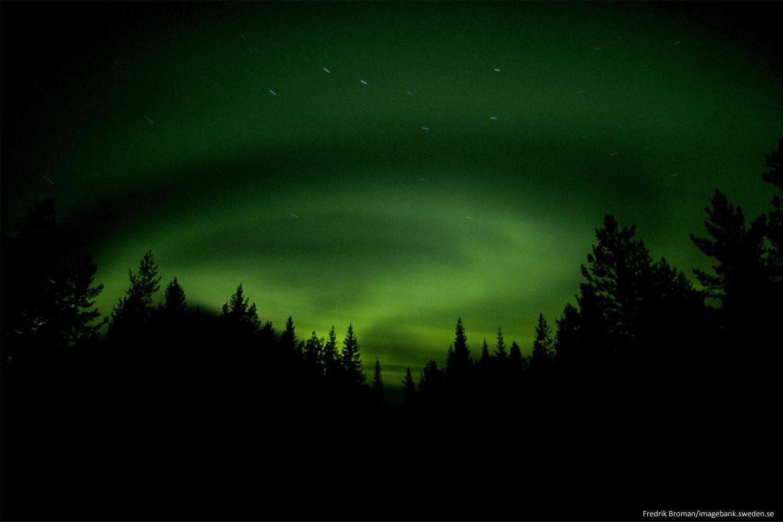 Northern lights tours Luleå