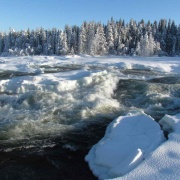 Zweeds lapland winter